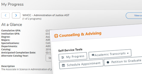 Counseling and Advising Assistance